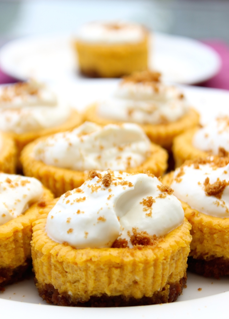 Mini Pumpkin Cheesecake Pie cheesecakes bruleed mini cheesecakes mini ...